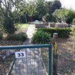 Garten Nummer 33