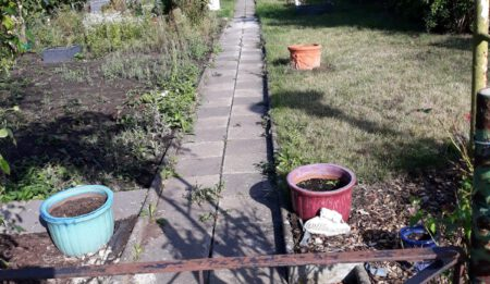 Garten Nummer 45