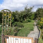 Garten Nummer  83